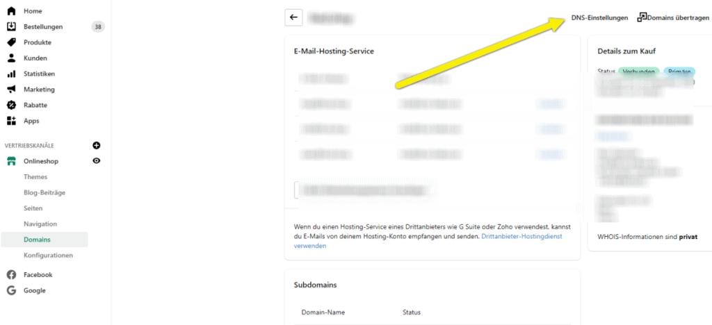 Facebook Domain Verifizierung Schritt 4 Shopify DNS-Einstellungen
